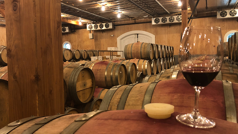 2017 Napa Valley – First Impressions (Jun 2018) | Vinous - Explore All